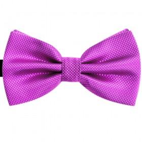 Papion violet, elegant, model Candy Rose