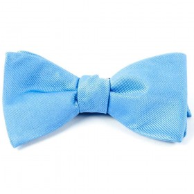 Papion self-tie blue