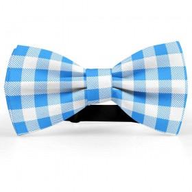 Papion barbati, alb-albastru regal, model carouri