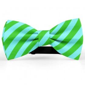 Papion barbati, albastru-acvamarin, dungi oblice verde-mar