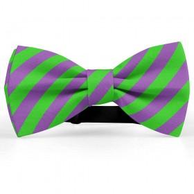 Papion barbati, mov-ametist, dungi oblice verde-mar