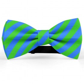 Papion barbati, albastru-electric, dungi oblice verde-mar
