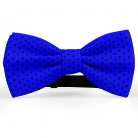 Papion albastru primar, buline mici