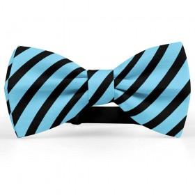 Papion barbati, albastru-azuriu, dungi negre late oblice