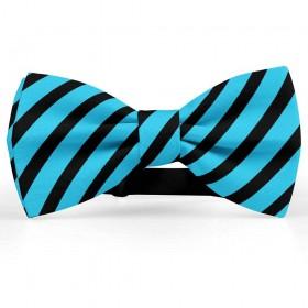 Papion barbati, albastru-ceruleum, dungi negre late oblice