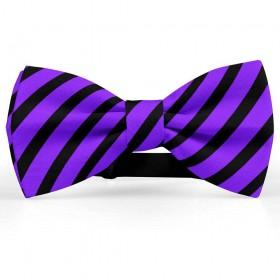 Papion barbati, violet-indigo, dungi negre late oblice