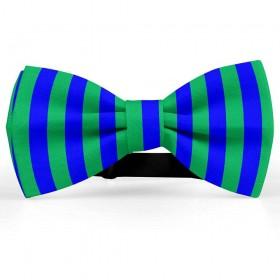 Papion bicolor, verde muschi-albastru primar, dungi late verticale