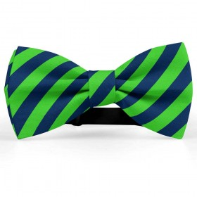 Papion barbati, bleumarin, dungi oblice verde-mar