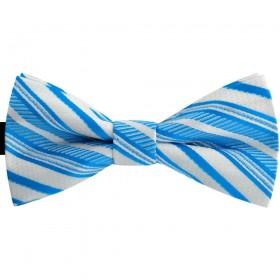 Papion barbati albastru primar, clasic, dungi albe