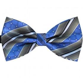Papion barbati albastru, dungi gri, butterfly