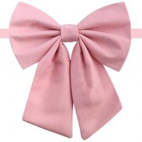 Papion dama, roz drajeu