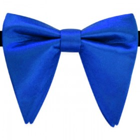 Papion amplu, model French Charm, elegant, albastru