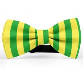 Papion bicolor, galben lămâie-verde gazon, dungi late verticale
