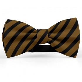 Papion barbati, maro-brun, dungi negre late oblice