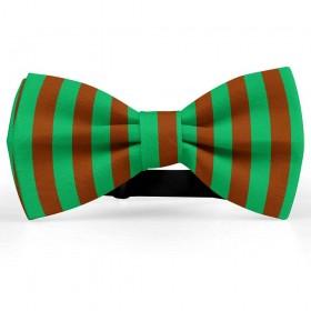 Papion bicolor, verde-maro roșcat, dungi late verticale