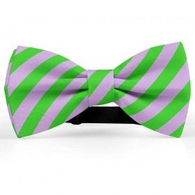Papion barbati, mov-glycine, dungi oblice verde-mar
