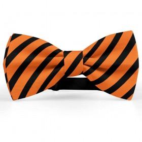 Papion barbati, portocaliu-morcov, dungi negre late oblice