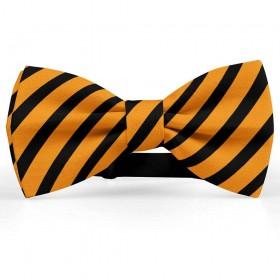 Papion barbati, portocaliu, dungi negre late oblice