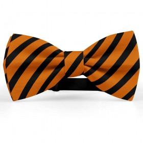 Papion barbati, portocaliu-inchis, dungi negre late oblice