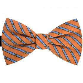 Papion portocaliu cu dungi bleu, butterfly