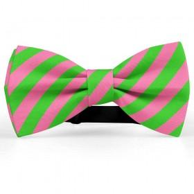 Papion barbati, roz, dungi oblice verde-mar