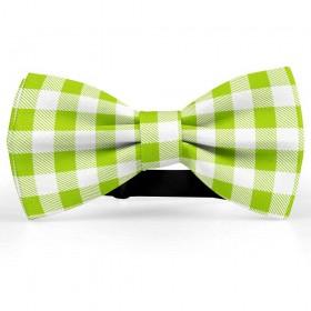 Papion barbati, alb-verde chartreuse, model carouri