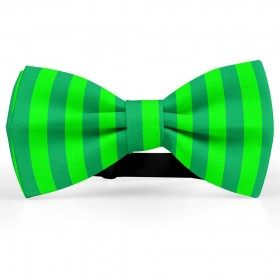 Papion bicolor, verde salvie-verde lime, dungi late verticale