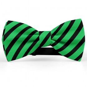 Papion barbati, verde-menta, dungi negre late oblice