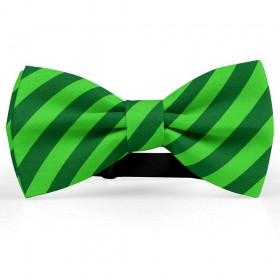 Papion barbati, verde-imperial, dungi oblice verde-mar