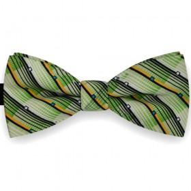 Papion barbati verde smarald, dungi fine oblice