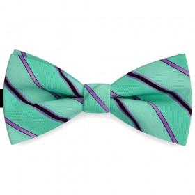Papion barbati verde opalin, clasic, imprimeu dungi mov parma