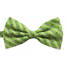 Papion barbati verde cu dungi oblice negre si albe