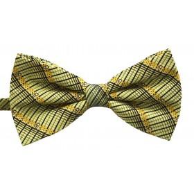 Papion barbati verde cu dungi oblice negre si model abstract galben